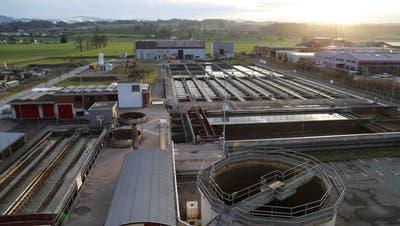 Die Abwasserreinigungsanlage Morgental in Steinach wird in den kommenden fünf Jahre für über 20 Millionen Franken saniert. (Bild: PD)