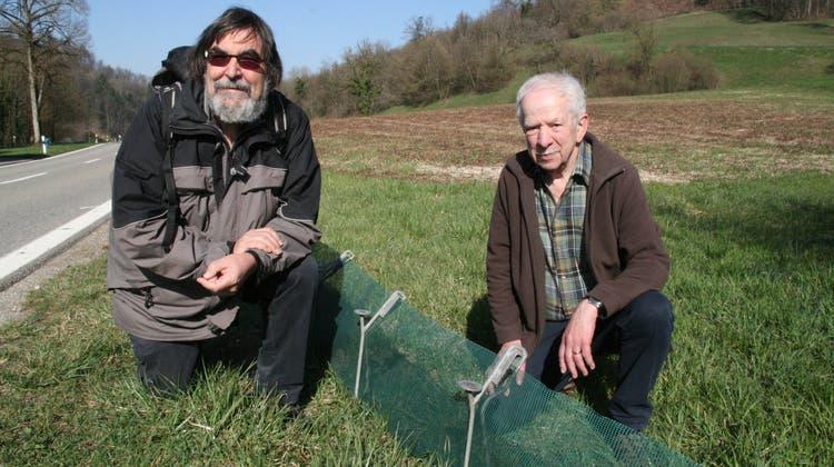 Meinrad Bärtschi und Rudolf Bölle (von links) kümmern sich in Mettauertal um Amphibien. (Peter Schütz)