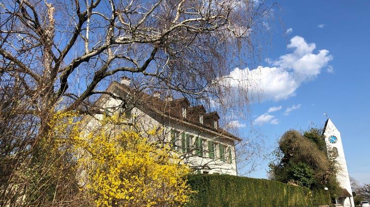 Die Birke (links im Bild) steht wohl seit rund 100 Jahren im Garten des Pfarrhauses. (Katja Schlegel)