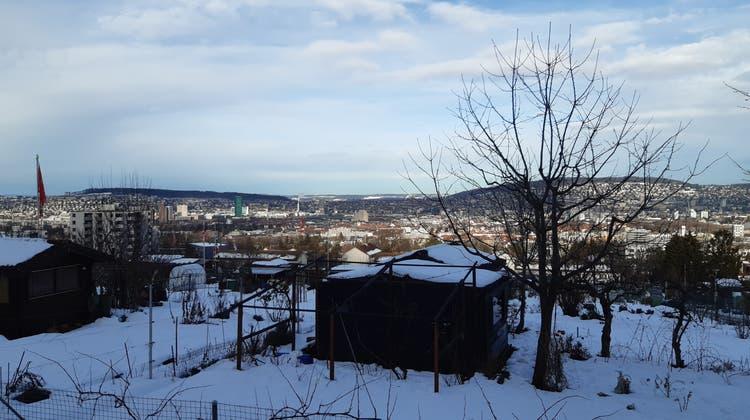 Mehr Hochhäuser und mehr Bäume: Mit dem Siedlungsrichtplan verhandelt der Gemeinderat Zürichs künftige Stadtentwicklung. (Matthias Scharrer)