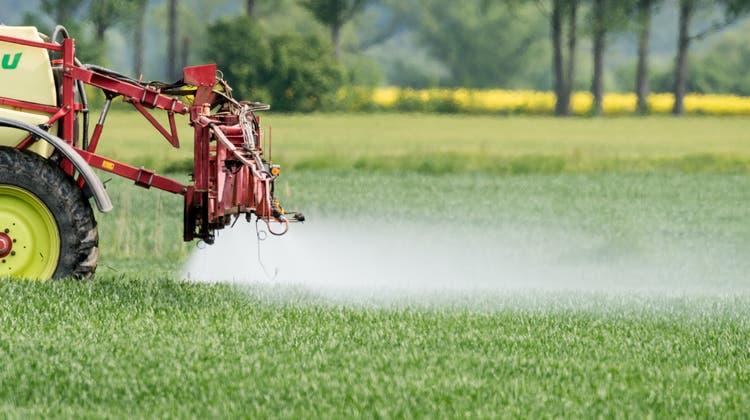 Ein Landwirt spritzt aufseinem Feld Pflanzenschutzmittel, um das junge Getreide zu schützen. (Bild: Patrick Pleul/DPA-Zentralbild)