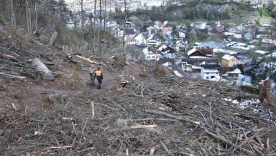 Bild vom Dienstagnachmittag: Eine grosse Waldschneise im untersten Teil des Geissbergtobels öffnet den Blick auf das Dorf. (Bilder: Heini Schwendener)