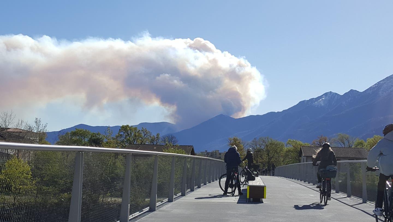 Der Rauch des Waldbrandes oberhalb von Cannobio (IT), fotografiert von Locarno aus. (Gerhard Lob)