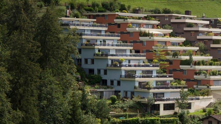 Die Aussengrundstücke der an den Wald grenzenden Häuserreihe liegen auch nach der Abstimmung 2020 in der Landwirtschaftszone. (Bild: Stefan Kaiser (Neuheim, 31. August 2020))