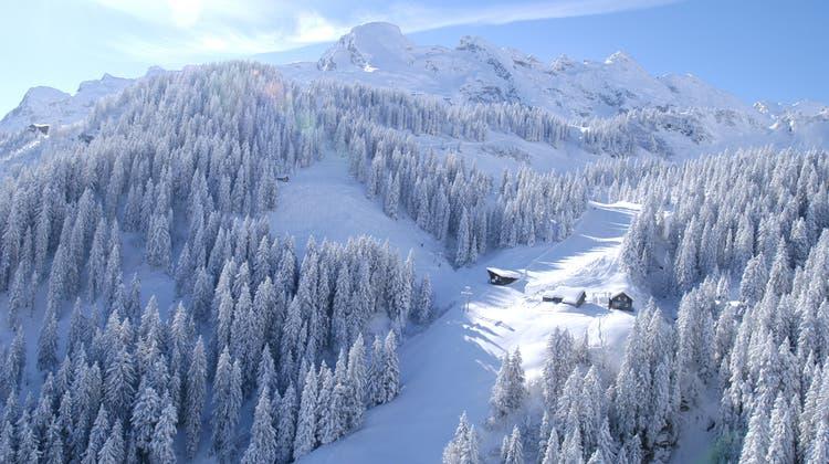 Das Naherholungsgebiet Brüsti im Winterkleid. (Bild: PD)