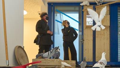 Die Alte Billettkasse im Theater Basel wird zum Taubenschlag. (zvg Ingo Hoehn / bz Zeitung für die Region)