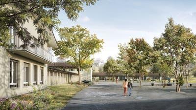Schulhaus Vorstadt Visualisierung (zvg/ Visualisierung)