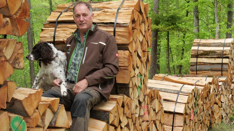 Alfred Bühler, hier mit Hund Mino, ist seit 1986 Förster in Gansingen. (Hans Christof Wagner)