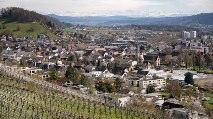In Wettingen wurden im vergangenen Jahr 2000 Liter Wein unter Wert verkauft. (Foto: Alex Spichale)
