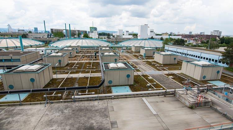 Ein Einblick in die Basler Abwasserreinigungs-Anlage. (Kenneth Nars)