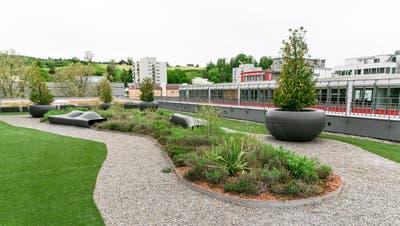 Gibt es den Urban-Gardening-Boom auch im Limmattal? Hier ein neu angelegter Dachgarten in Schlieren. (Sandra Ardizzone)
