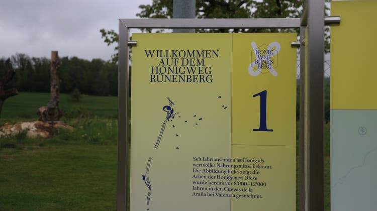 Der Honigweg beginnt bei der Wetterstation Rünenberg und führt durch Wald und Wiese zurück ins Dorf, wo er an der Hauptstrasse 6 endet. (Eva Oberli)
