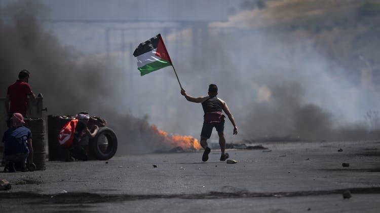 Ein Demonstrant mit der Flagge der Palästinenser: Der Konflikt mit Israel geht Jahrzehnte zurück. (Mahmoud Illean / AP)