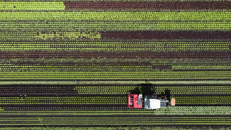 Die Gemeinde Kallern hat 16 Bauernhöfe