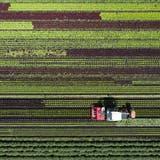 Vier von elf Bauernhöfen in Frick sind Bio – mehr als in den meisten Gemeinden