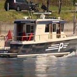 Bei der gross angelegten Suchaktion nach der vermissten Taucherin am Ostersonntag waren auch Boote und ein Helikopter im Einsatz. (Bild: Screenshot)