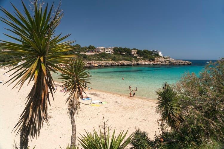 Mallorca ist diesen Sommer als Feriendestination begehrt.