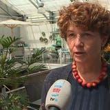 Einkaufstouristen strömen wieder nach Deutschland:«Das merken wir natürlich am Umsatz»