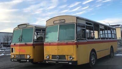 Die Saurer Busse aus den 70er-Jahren bilden das Herzstück der geplanten Strandbar in Arbon am See. (Bild: PD)
