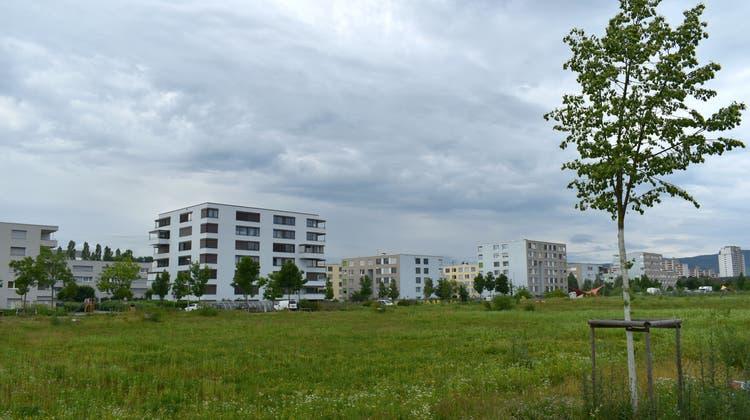 Im Sommer 2019 genehmigte die Kaiseraugster Gemeindeversammlung die Zuteilung des Gebiets Wurmisweg-West zur Wohnnutzung – jetzt soll gebaut werden. (Nadine Böni (20. Juni 2019))