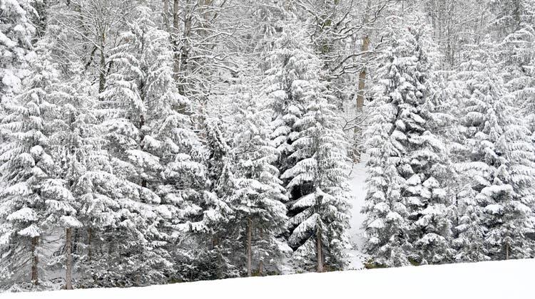 In der Nacht auf Sonntag schneite es in der Schweiz vereinzelt