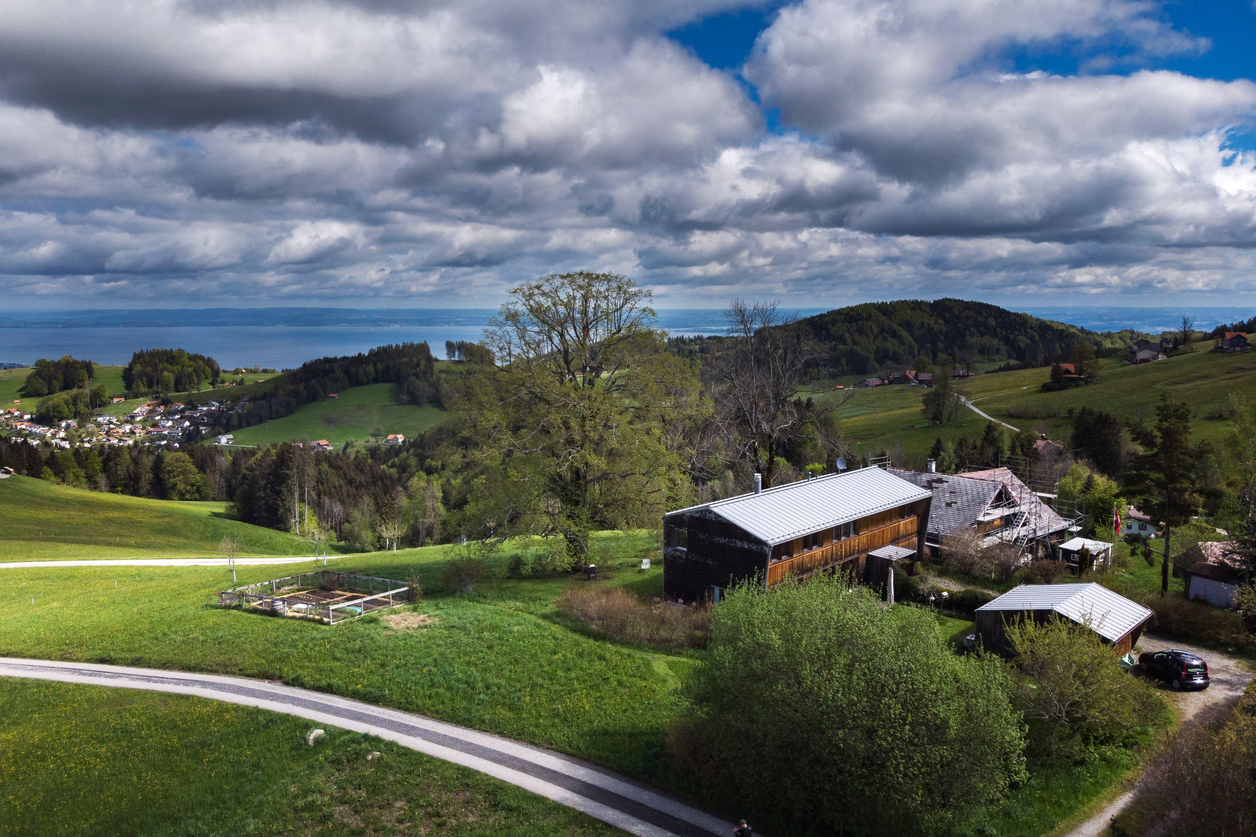 Haus und Garten von Monika Pearson bieten einen herrlichen Ausblick.