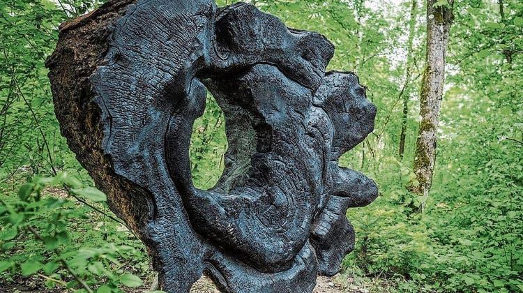 Die «Herz-Wende» im Wald – aus dem Stamm einer 160 Jahre alten Linde wird Kunst