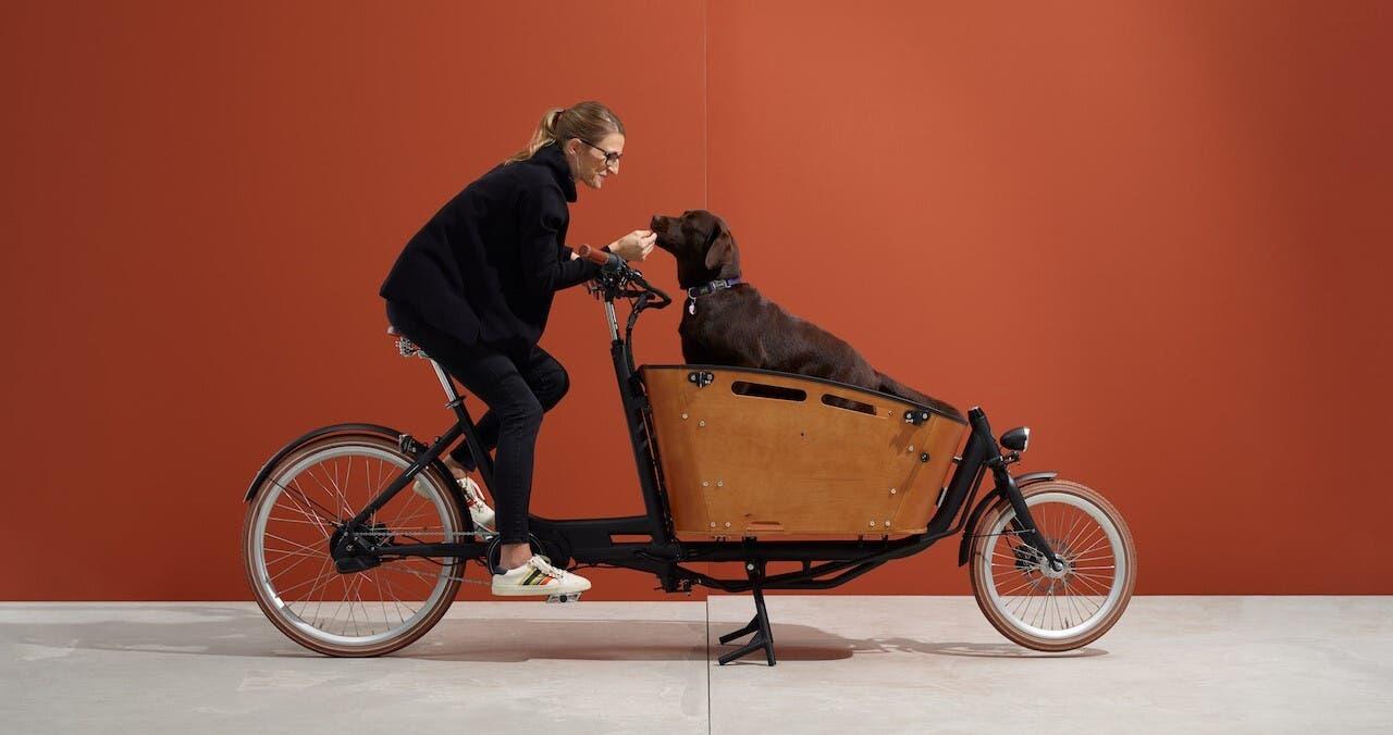 Great Gatsby hat Ego Movement sein Cargo-E-Bike genannt.