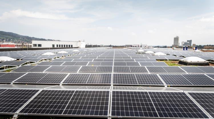 Solaranlagen wie jene auf dem Lidl-Verteilzentrum können mit Fördergeldern der Stadt unterstützt werden. (Bild: Andrea Stalder)