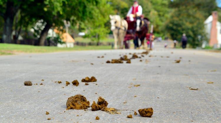 Pferdemist auf der Strasse sorgt immer mal für Ärger. (Shutterstock)