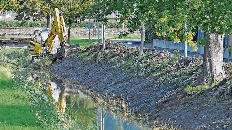 Bevölkerung soll sich zum Hochwasserschutz äussern – Planung dauert schon fast 20 Jahre