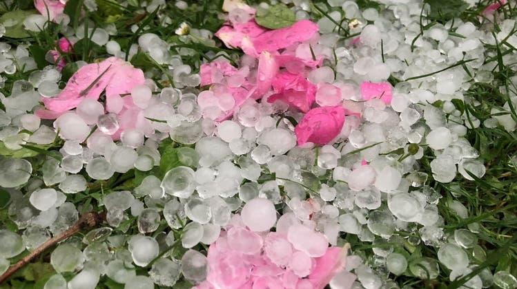 Rund 32 Mal pro Jahr hagelt es in der Schweiz so richtig: Mit Körnern von mehr als 2 cm Durchmesser. (Archivbild) (Bruno Kissling)