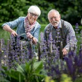 Sie ist für die Blumen und Stauden zuständig, er für die Bäume: die Gossauer Norbert und Susi Hälg in ihrem Park. (Bild: Michel Canonica)