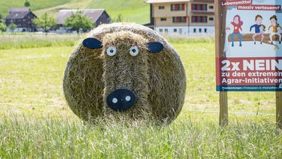 Die Bauern haben sich durchgesetzt und die beiden Agrar-Initiativen gebodigt. (KEYSTONE/Urs Flueeler) (Urs Flueeler / KEYSTONE)