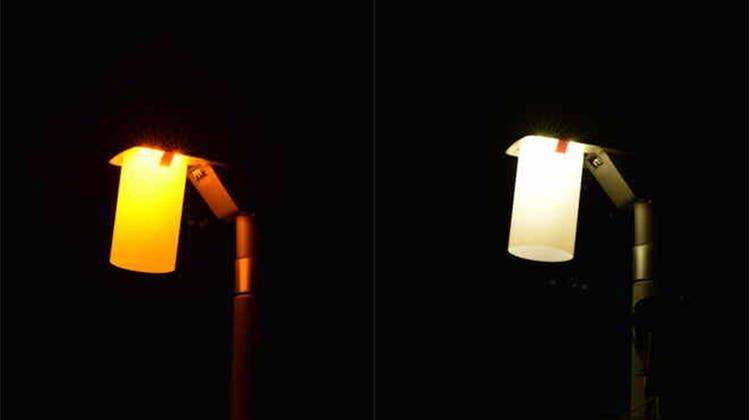 Warmes Licht vs. kaltes Licht: Die Forschenden wollen auch herausfinden, welchen Einfluss die Lichtfarbe auf die Insektenwelt hat. (zvg)