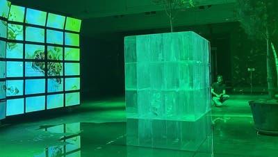 Acht Kubikmeter Eis tauen vor sich hin. (Simon Hänggi)