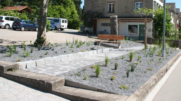 Die Rabatte beim Friedhofparkplatz wurde umgestaltet und mit einer mehrjährigen Bepflanzung versehen. (Bild: PD)