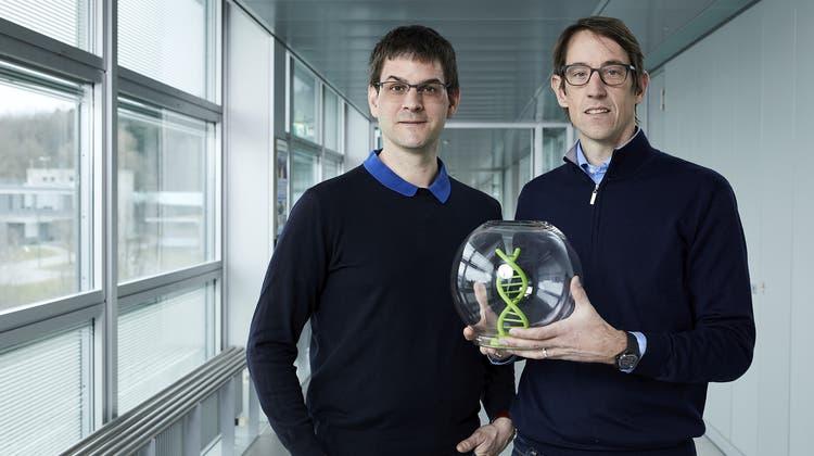 Wendelin Stark (l.) und Robert Grass (r.) von der ETH Zürich wollen digitale Datenüber Jahrtausende vor Verfall schützen. (Keystone)
