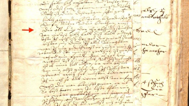 «Der alt Lump der ehr abschneidig Stinckher», schreibtMaria Elisabeth in einem Brief. Sie meint damit vermutlich ihren Schwiegervater. (zvg/Kantonsbibliothek Aargau)
