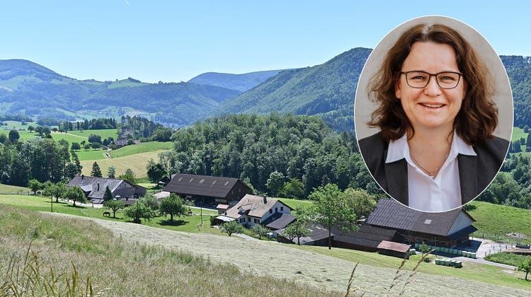 Hier leben die meisten Rinder und Schafe im ganzen Kanton Solothurn: in Mümliswil-Ramiswil. (Bruno Kissling)