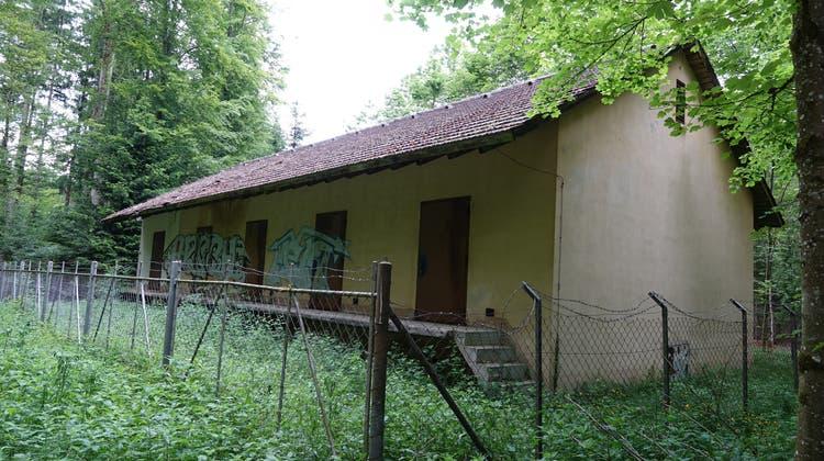 Das Munitionsmagazin im Affolterwald wird abgerissen. (Anja Stampfli)