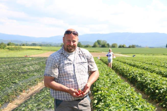 Beat Mahrer, Landwirt und Erdbeer-Produzent aus Möhlin, eröffnet die Selbstpflücksaison.