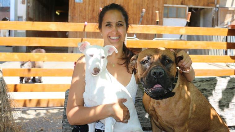 Stefanie Sutter, Leiterin desTierlignadenhofs, hat mit ihrer Schwester Janina unter anderem die Obhut über zehn Hunde und 38 Katzen. (Dennis Kalt /Aargauer Zeitung)