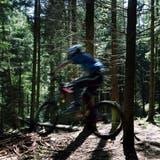 Biken im Wald macht Spass, kann aber zu Konflikten führen. (Bild: Esther Michel)