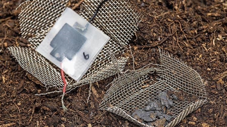 Eine Kleinbatterie aus dem 3D-Drucker, die im Kompost verrottet