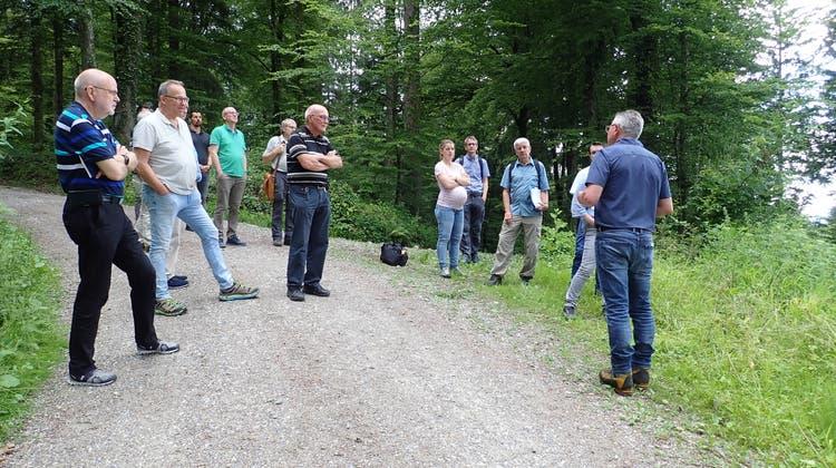 Auf dem informativen Rundgang traf die Gruppe 18 verschiedene Baumarten an. Die Vielfalt soll auch in Zukunft erhalten bleiben. (Cynthia Mira)
