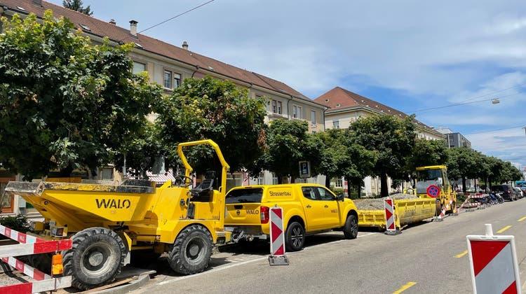 Die Bagger stehen bereits bereit: An der Margarethenstrasse werden Anfang August 17 Kugelahorne gefällt. (Nora Bader)