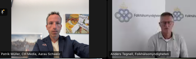 Anders Tegnell beim Interview über Zoom.