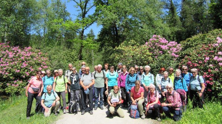Bergwandergruppe Olten