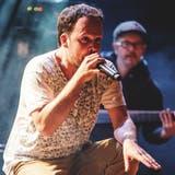 Der Oltner Collie Herb, der heute in Wisen lebt, will ab Juli wieder Konzerte geben. (zvg/Tad Douk)